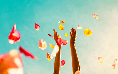 Warum du deine Fortschritte feiern solltest
